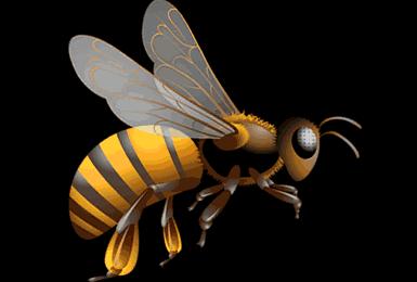Arı sokmasında iğne çıkmazsa ne olur