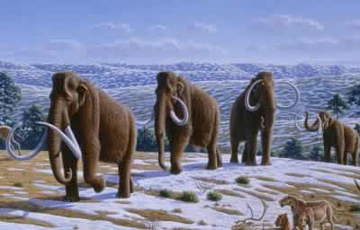 Ege denizi kaçıncı jeolojik zamanda oluşmuştur