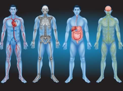 Hangi hastalığa hangi bölüm bakar ? Hangi polikliniğe gitmeliyim