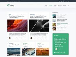 Ücretsiz Hafif WordPress Blog Teması 2019